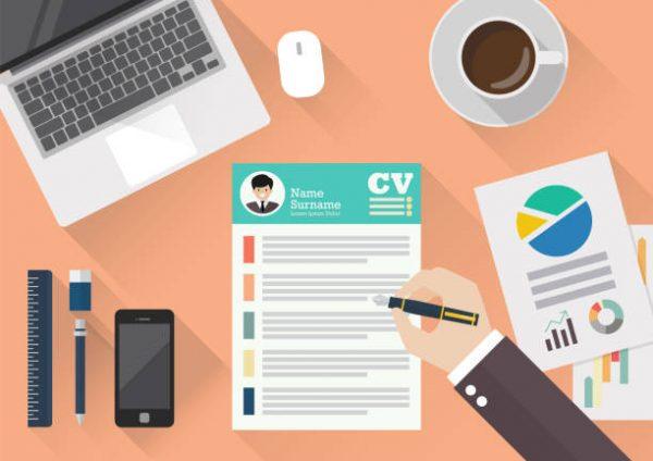 Mid Level Professional CV
